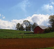 Red Barn - Indiana by Sandy Keeton