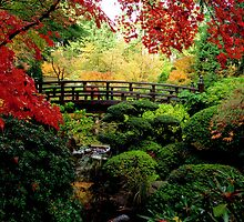 Falling for Fall Foilage at the Japanese Gardens by Marita Sutherlin