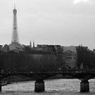 Parisian by Garrett Santos