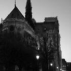 Notre Dame by Garrett Santos