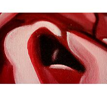 Rose Macro Abstract in Oil Photographic Print