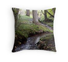 Small Winding Stream Throw Pillow