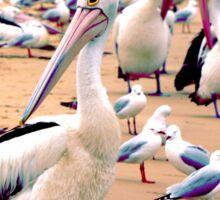 Pelican 4.0 Sticker