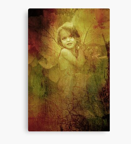 The old fairy Canvas Print