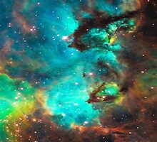 Galaxy / Seahorse / Large Magellanic Cloud / Tarantula Nebula by boom-art