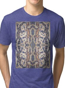 Aboriginal Reptile Tri-blend T-Shirt