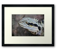 Here There Be Dragons! Framed Print