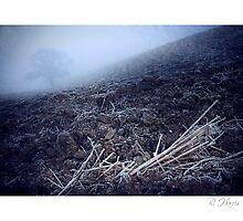 Uncertain Horizons - Homer, nr Much Wenlock by rharris-images