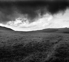 Dartmoor by violetstar