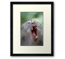 Monkey fang Framed Print