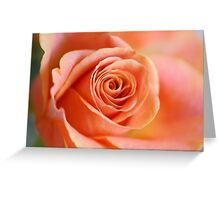 Beauty in peach Greeting Card