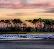 Sunrise at Waites Island by suzannem73