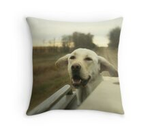 Its a candy shop for dogs Throw Pillow