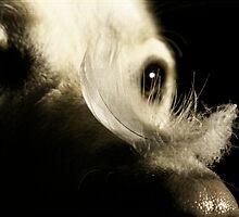 Bird dog by picturedunn