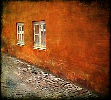 Two Windows by Jonicool