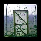 Polytunnel Door by elisabeth tainsh