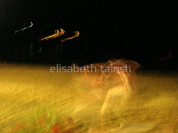 sprinter by elisabeth tainsh