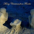 Christmas From Florida ~ Part One by artisandelimage