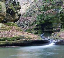 Illinois Canyon Waterfall by Richard Williams
