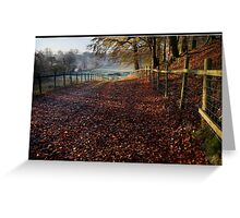 Leafy farmers track in the Ribble Valley Greeting Card