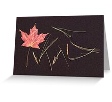 Secret Language of the Forest Greeting Card