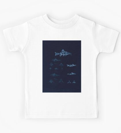The fishes of India by Francis Day 103 - Inverted - Amblyceps mangois Erethistes hara Kids Tee