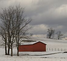 Winter scape with a touch of red by drop-thumb