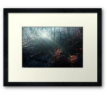 First Rays on a Frosty Morning Framed Print