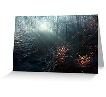 First Rays on a Frosty Morning Greeting Card