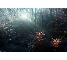 First Rays on a Frosty Morning Photographic Print