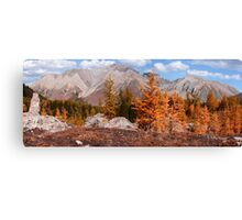 Autumnal woods Canvas Print