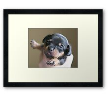Well,Hellooo There! Framed Print