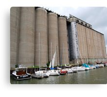 Buffalo Grain for Sail Canvas Print
