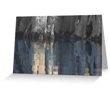 Cypress reflection Greeting Card