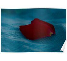 Rose Petal Poster