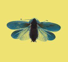 Blue Moth Kids Clothes