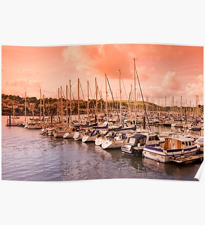 Dusk on the River Dart Poster