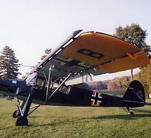 Fieseler Fi156 Storch by Steven Squizzero