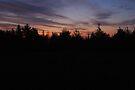 Sunrise On Murphy's Farm by Allen Lucas