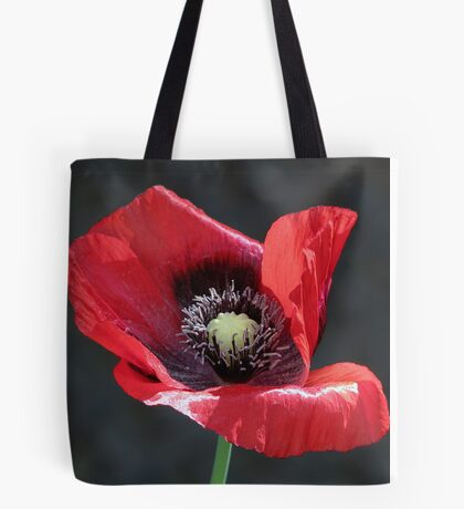 We remember  Tote Bag