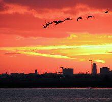Sunset 15-08-2007 by Sharon Perrett