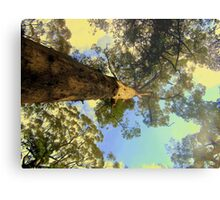 A little perspective Metal Print