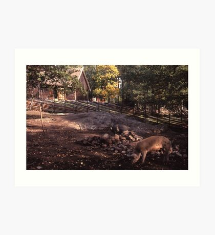 Pig farm, Stockholm Art Print