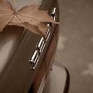 Sepia Leaf by ReveLinWonder