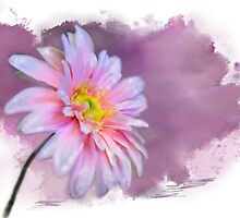 Painted Pink Beauty by MaryTimman
