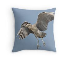 Clear The Landing Strip ! Throw Pillow
