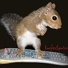 Surfer Squirrel by kayzsqrlz