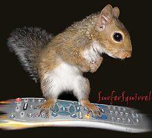 Surfer Squirrel by Kay Kempton Raade