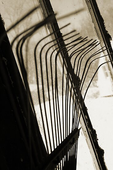 Sepia Tone Metal Rake Prongs by PhotoCrazy6