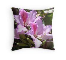 Orchid tree (bauhinia variegata/ chinensis) blossoms Throw Pillow